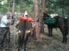 angel-fire-elk-hunt-107