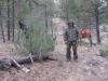 angel-fire-elk-hunt-canon14