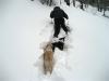 snowshoing_monticello_09